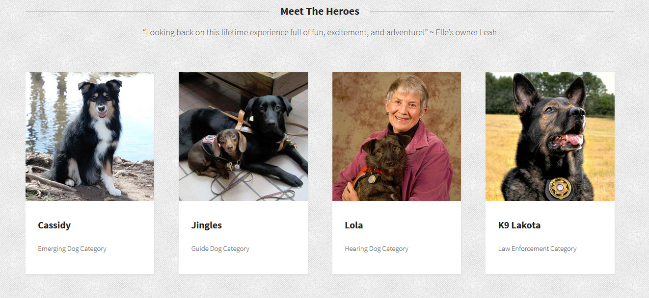 Hero Dog Awards on Hallmark Channel Tonight #herodogawards